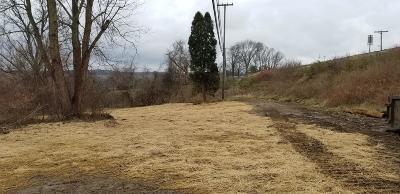 Newark Residential Lots & Land For Sale: 1326 Licking Valley Road