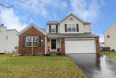 Groveport Single Family Home For Sale: 459 Greenhill Drive