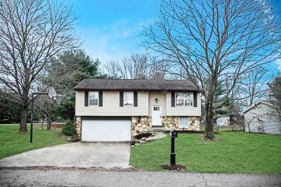 Newark Single Family Home Contingent Finance And Inspect: 1860 Churchill Downs Road
