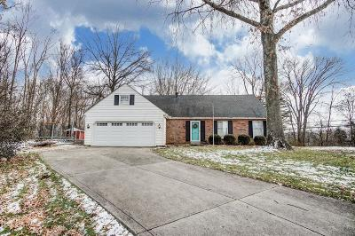 Single Family Home For Sale: 151 Pine Village Drive