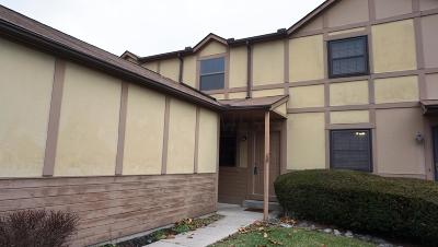 Worthington Condo Contingent Finance And Inspect: 674 Alta View Court #44