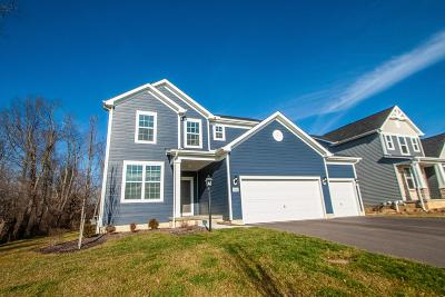 Pickerington Single Family Home For Sale: 8240 Rapala Lane NW