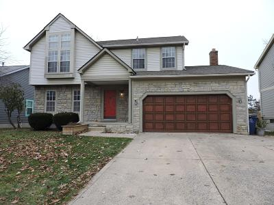 Columbus Single Family Home For Sale: 3955 Maidstone Drive