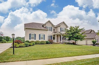 Galena Single Family Home For Sale: 6072 Braymoore Drive