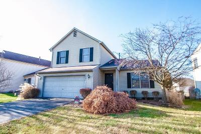 Hilliard Single Family Home For Sale: 2341 Yagger Bay Drive