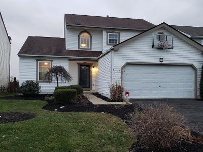 Grove City Single Family Home For Sale: 4587 Bridgehill Drive