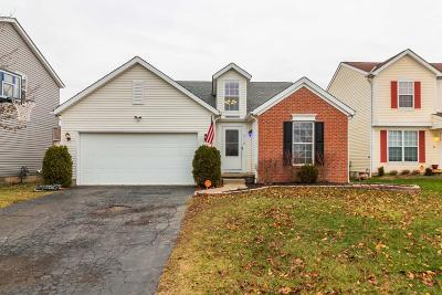 Blacklick Single Family Home For Sale: 8110 Creekstone Lane