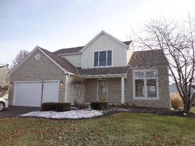 Powell Single Family Home For Sale: 7351 New Point Place
