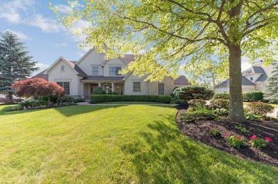 Dublin Single Family Home For Sale: 8219 Campden Lakes Boulevard