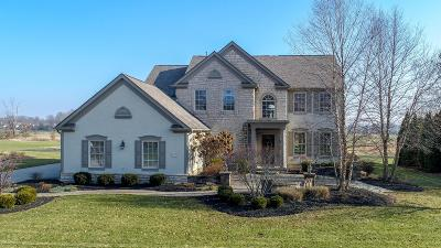 Westerville Single Family Home For Sale: 5721 Medallion Drive W