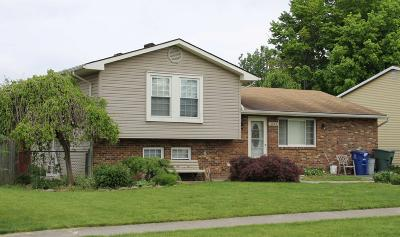 Franklin County Single Family Home Contingent Finance And Inspect: 3925 Hendron Road