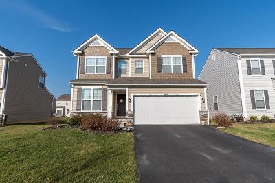 Blacklick Single Family Home For Sale: 8652 Melton Fields Drive