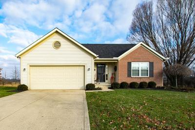 Sunbury Single Family Home For Sale: 760 Prairie Run Drive