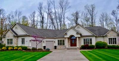 Pickerington Single Family Home For Sale: 6646 Cosimo Lane