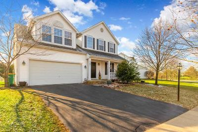 Blacklick Single Family Home For Sale: 7501 Ashley Meadow Drive