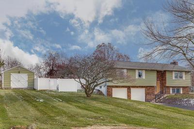Centerburg Single Family Home For Sale: 5984 Johnsville Road