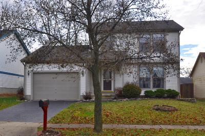 Franklin County, Delaware County, Fairfield County, Hocking County, Licking County, Madison County, Morrow County, Perry County, Pickaway County, Union County Single Family Home For Sale: 1288 Pinnacle Drive