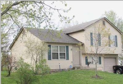 Franklin County, Delaware County, Fairfield County, Hocking County, Licking County, Madison County, Morrow County, Perry County, Pickaway County, Union County Single Family Home For Sale: 5179 Burdett Drive