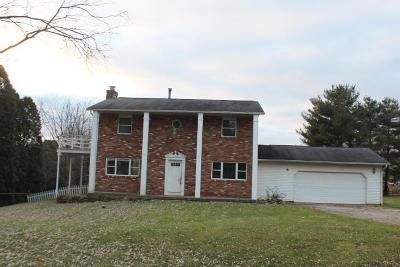 Franklin County, Delaware County, Fairfield County, Hocking County, Licking County, Madison County, Morrow County, Perry County, Pickaway County, Union County Single Family Home For Sale: 41 Sunny Lane