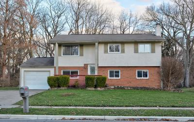 Gahanna Single Family Home For Sale: 290 Brookhaven Drive E