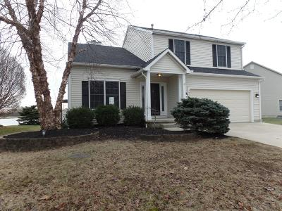Hilliard Single Family Home For Sale: 2872 Lake Hollow Road
