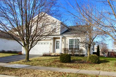 Single Family Home For Sale: 2248 Red Barn Street