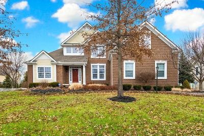 Dublin Single Family Home For Sale: 4182 Conine Court