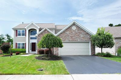 Powell Single Family Home Contingent Finance And Inspect: 7752 Maple Run Lane