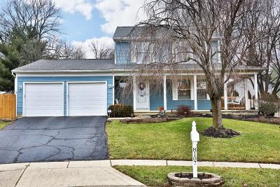 Dublin Single Family Home Contingent Finance And Inspect: 8107 Moliana Court