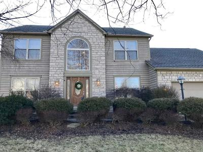 Hilliard Single Family Home Contingent Finance And Inspect: 3599 Boathouse Drive