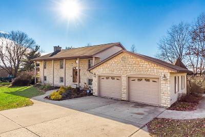 Lancaster Single Family Home For Sale: 4385 Lancaster Kirkersville Road NW