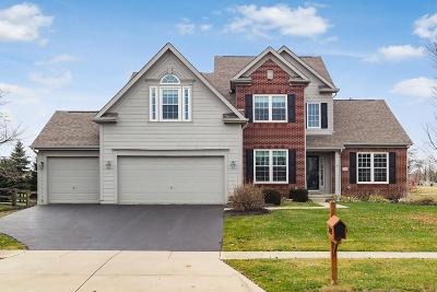 Lewis Center Single Family Home For Sale: 3105 Alum Trail Place