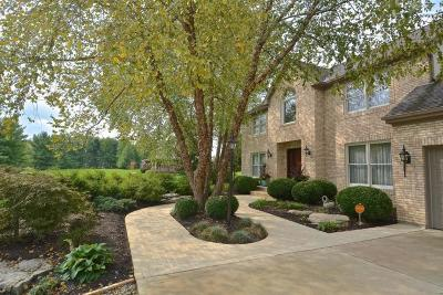Galena Single Family Home For Sale: 1820 Africa Road