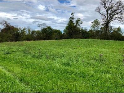 Newark Residential Lots & Land For Sale: 141 Hainsview Drive