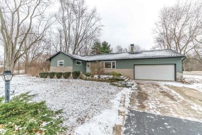 Westerville Single Family Home For Sale: 7622 Cubbage Road