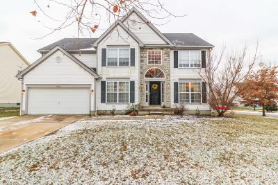Westerville Single Family Home For Sale: 7942 Lazelle Woods Drive