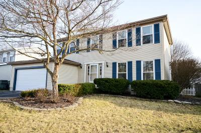Hilliard Single Family Home For Sale: 5965 Lakefront Avenue