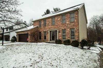 Delaware Single Family Home For Sale: 771 Executive Boulevard