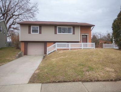Newark Single Family Home For Sale: 104 Annette Avenue