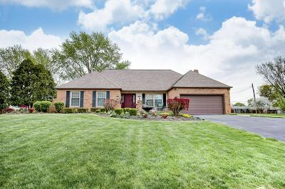 Franklin County, Delaware County, Fairfield County, Hocking County, Licking County, Madison County, Morrow County, Perry County, Pickaway County, Union County Single Family Home For Sale: 1024 Savannah Drive