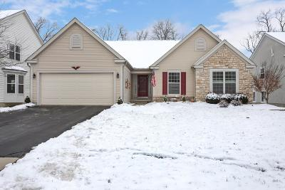 Franklin County, Delaware County, Fairfield County, Hocking County, Licking County, Madison County, Morrow County, Perry County, Pickaway County, Union County Single Family Home For Sale: 411 Inverness Avenue