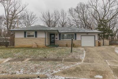 Franklin County, Delaware County, Fairfield County, Hocking County, Licking County, Madison County, Morrow County, Perry County, Pickaway County, Union County Single Family Home For Sale: 94 Rita Court
