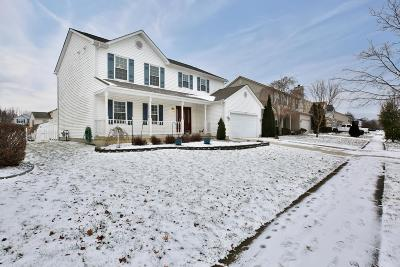 Delaware Single Family Home For Sale: 128 Glengary Drive