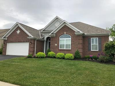 Grove City Single Family Home For Sale: 1557 Fairway Drive
