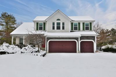 Grove City OH Single Family Home For Sale: $325,000