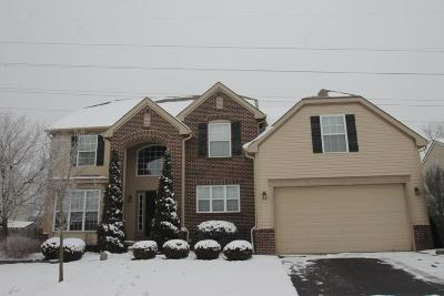 Reynoldsburg Single Family Home For Sale: 8252 Bellow Park Drive