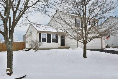 Single Family Home For Sale: 207 Aaron Court