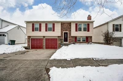 Hilliard Single Family Home For Sale: 5034 Hidden View Drive