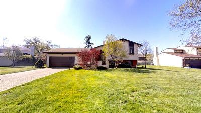 Columbus Single Family Home For Sale: 2755 Oakridge Court