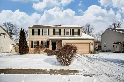 Ashville OH Single Family Home For Sale: $189,995